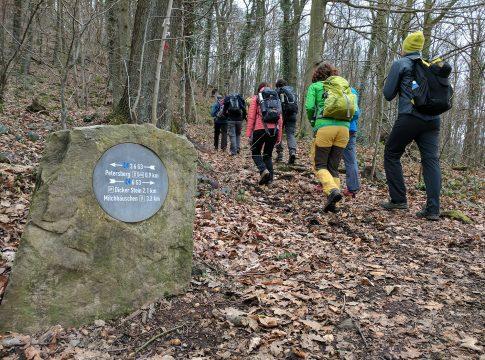 Wanderung von Bloggern im Siebengebirge