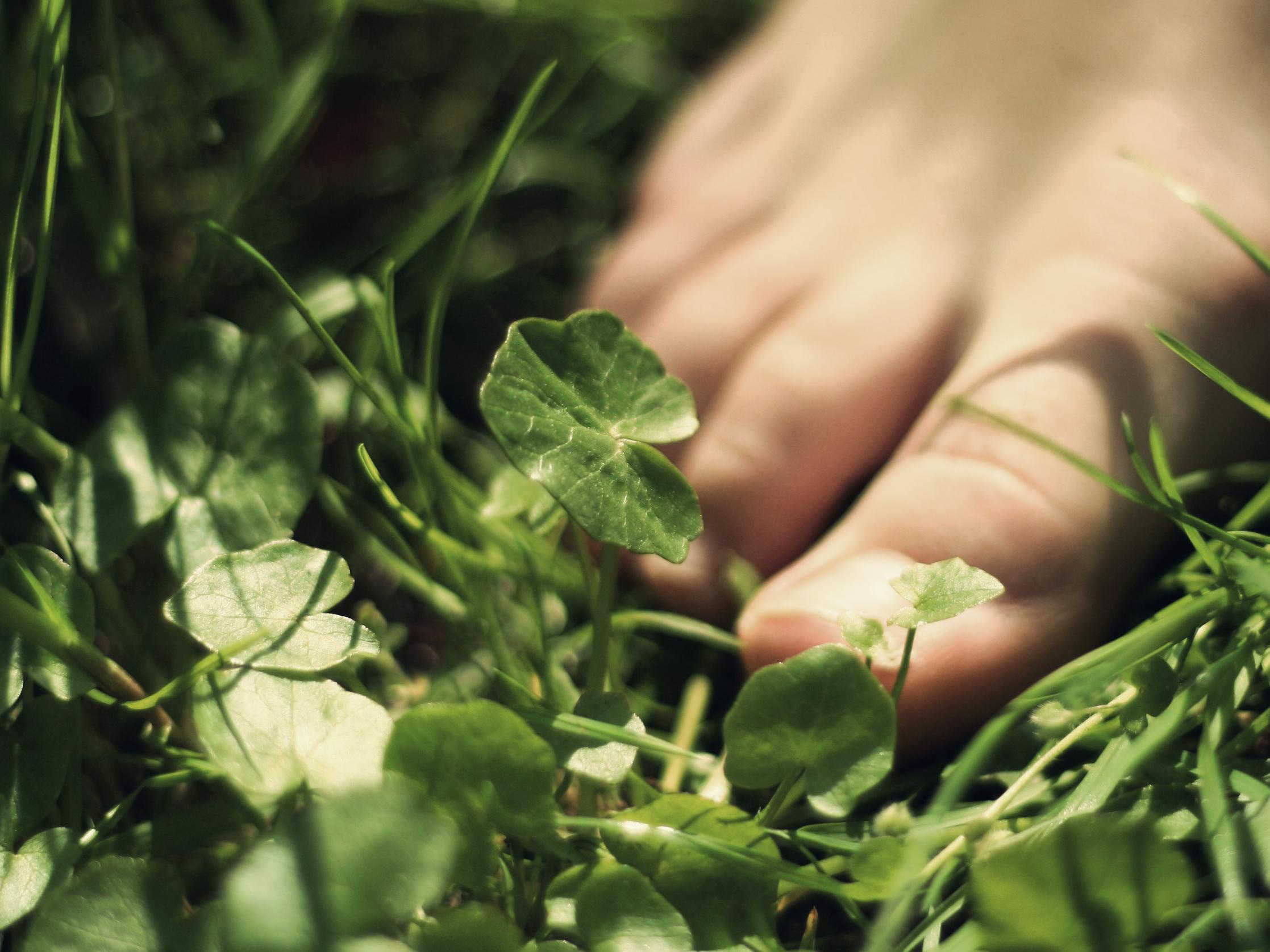 Blauer Zehennagel – 5 mögliche Ursachen und Behandlungen | Outdoorseite